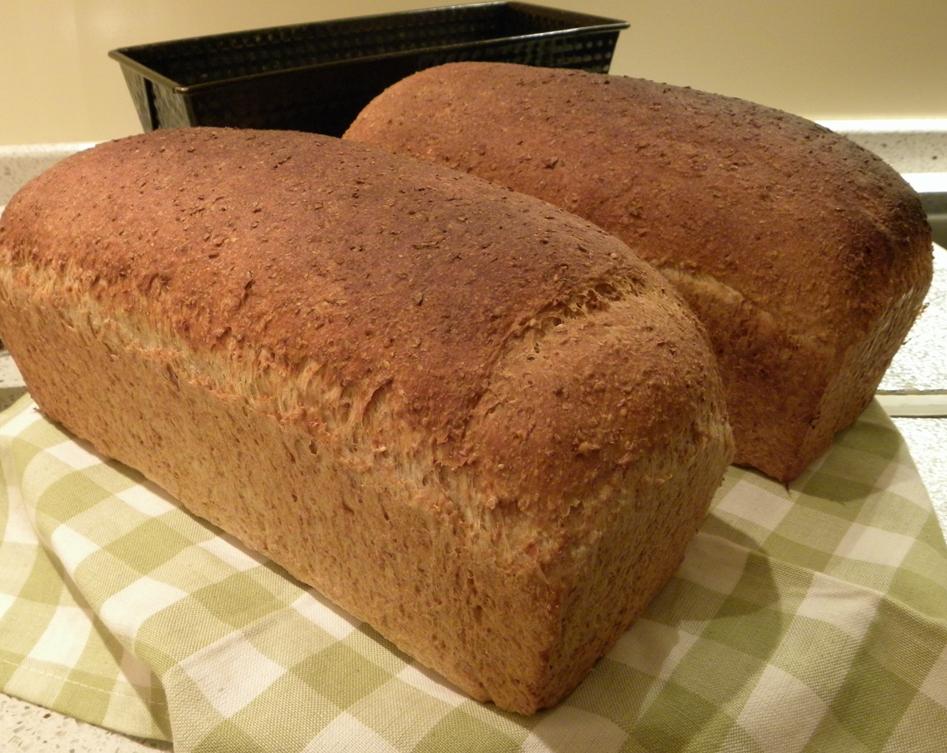 Dagelijks brood