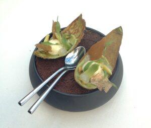 Dessert van avocado De Librije